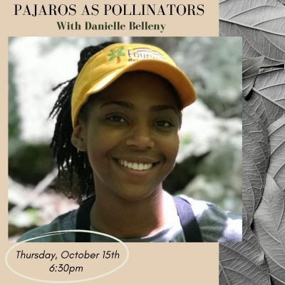 Pajaros as Pollinators with Danielle Belleny