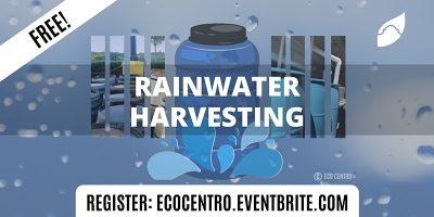 Rainwater Harvesting by Eco Centro