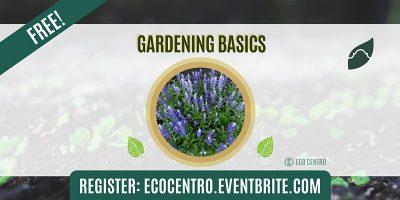 Gardening Basics by Eco Centro
